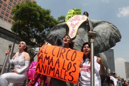 CIRQUEROS PROTESTA 2