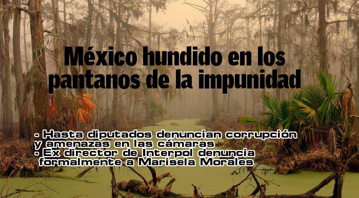 IMPUNIDAD HUNDIDOS
