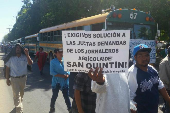 JORNALEROS EN MEXICALI DEMANDA