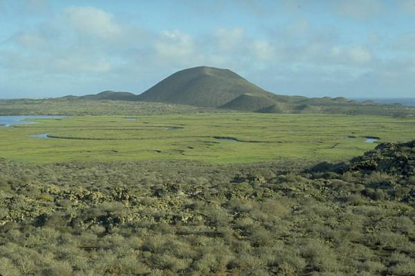 Roca volcánica de San Quintín