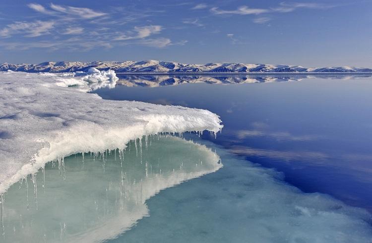 El deshielo del Mar Ártico, ¡impresionante! (Foto: CICESE)