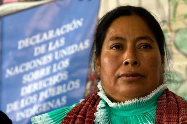 Foto: El Economista).