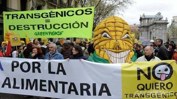 GREENPEACE NO TRANSGENICOS MARCHA