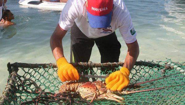 Piden pescadores de El Rosario actuar con apego a derecho