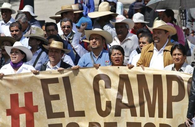 PROTESTA UCD MEXICO