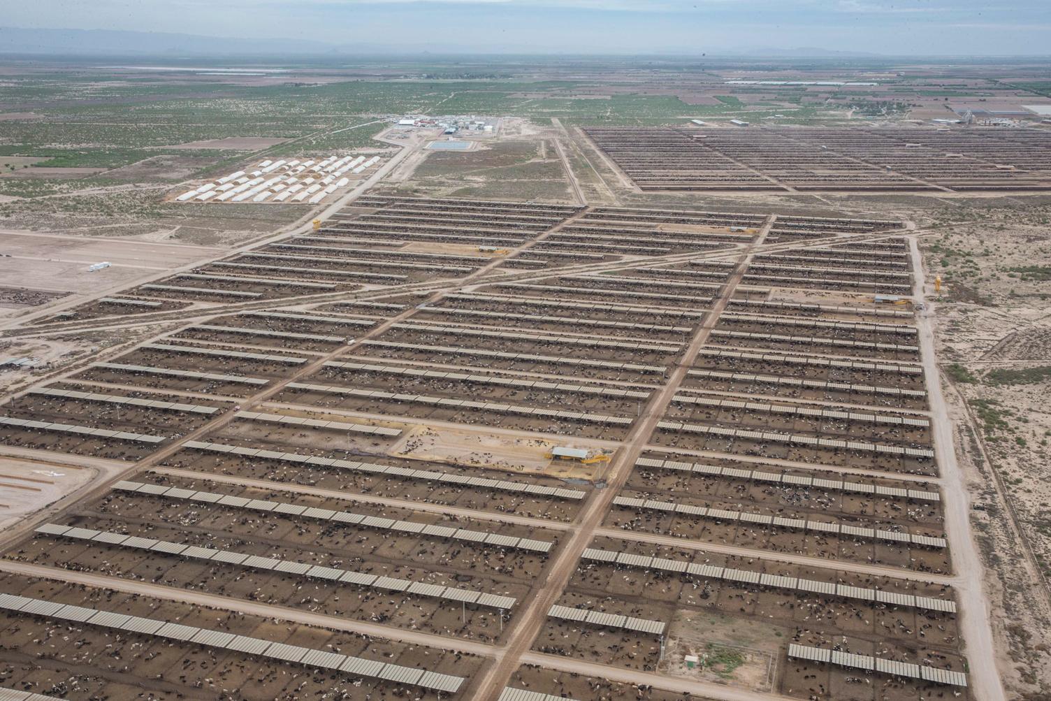 Agroparque integral de SuKarne Lucero. Durango, que en marzo de este año abrió sus puertas luego de una inversión de 8 mil millones de pesos (Foto: SuKarne),