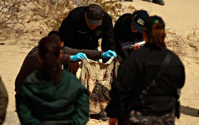 Hallazgo realizado durante un rastreo en 2012 Foto: Luis Torres. El Diario