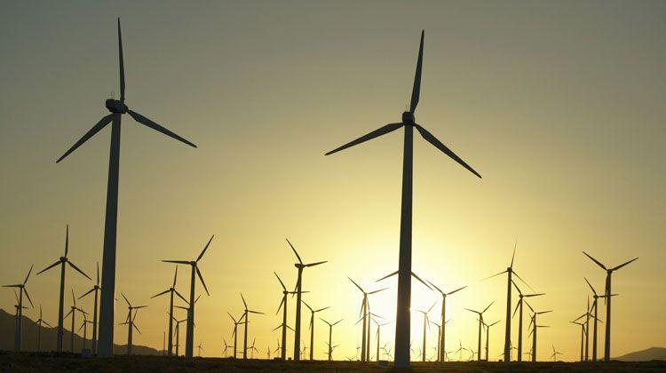 Hace dos años y medio, el consorcio Sempra Energy vendió el 50% de su proyecto eólico Sierra Juárez en Baja California. Hoy, anunció la compra de la mayor planta eólica en México y de América Latina en Nuevo León. ¿A qué juega la trasnacional californiana?  (Foto: Internet).