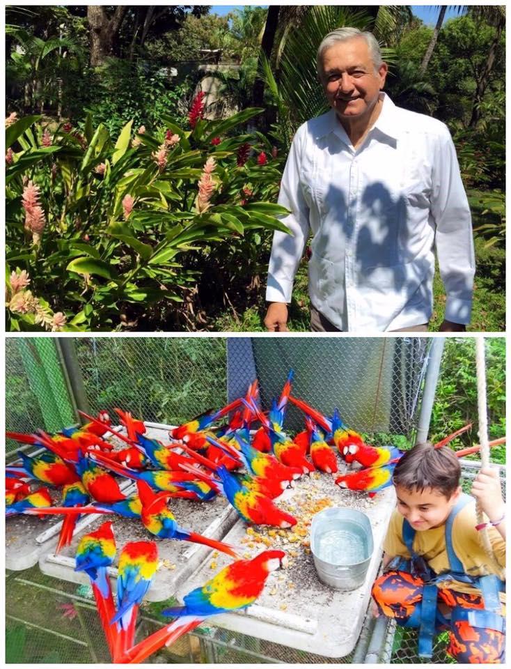 amlo-su-hijo-y-guacamayas