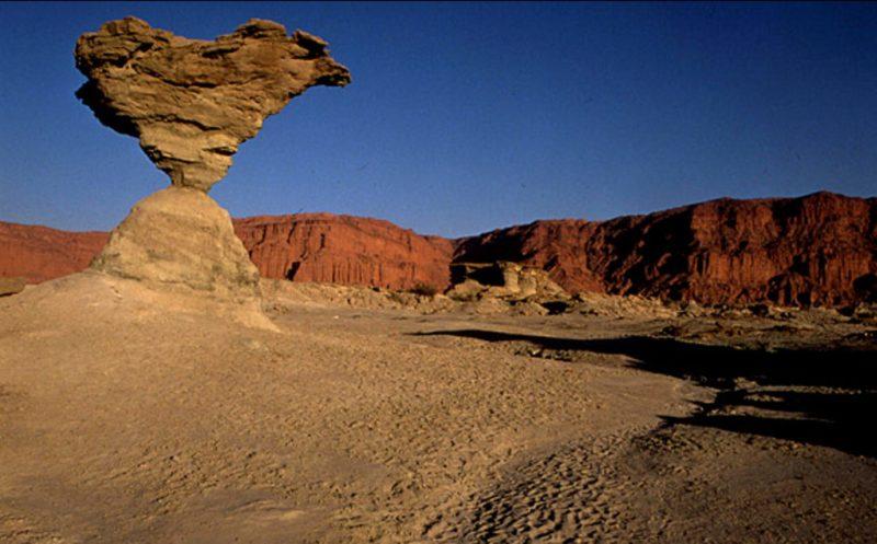 roca-pajaro-desierto